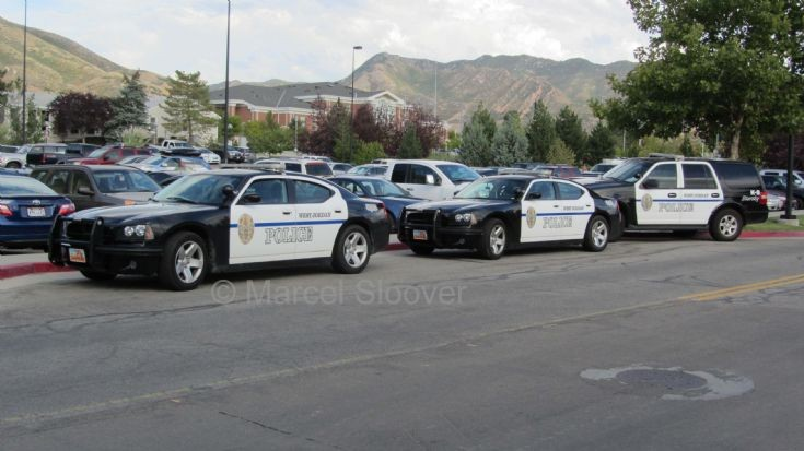 Chargers and a K-9
